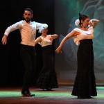 Festival Dansa Jove (75)