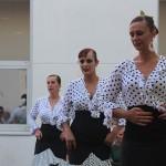 Festival Danza Joven (100)
