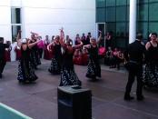 Ball flamenc Carmela