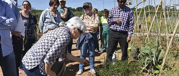 Visita Horta Social (9)