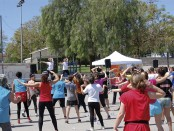 Activitat Solidaria Lluis Companys (2)