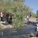 neteja riu instituts (15)