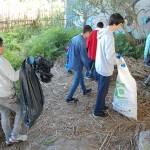 neteja riu instituts (7)