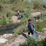 neteja riu instituts (8)
