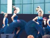 Dansa Jove