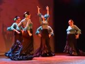 Flamenc Carmela (42)