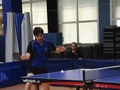 tenis taula masculi