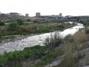 riu Ripoll juny 2010 (11)