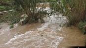 riu Ripoll pluges (4)